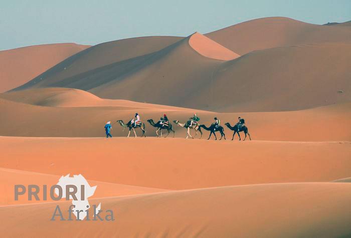 Merzouga Südmarokko Sahara Wüste Kamele PRIORI Reisen