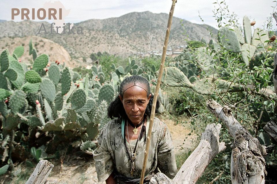 Irob-Frau Äthiopien PRIORI Afrika Reisen Trekking
