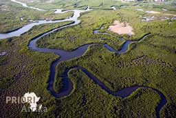 Guinea-Bissau Reisen Cacheu Mangroven PRIORI Afrika
