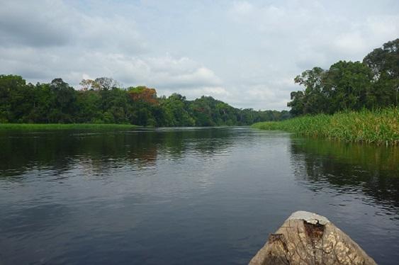 Kamerun Boot See Fluss Reisen