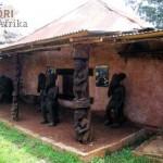 Kamerun Reisen Bafoussam Kultur